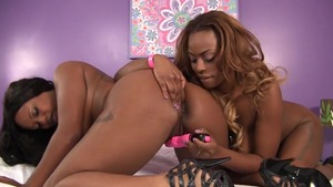 Lesbo pussy licking