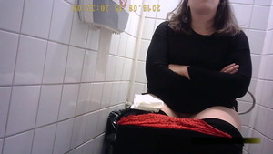 Teen receives upskirt rough sex in toilet